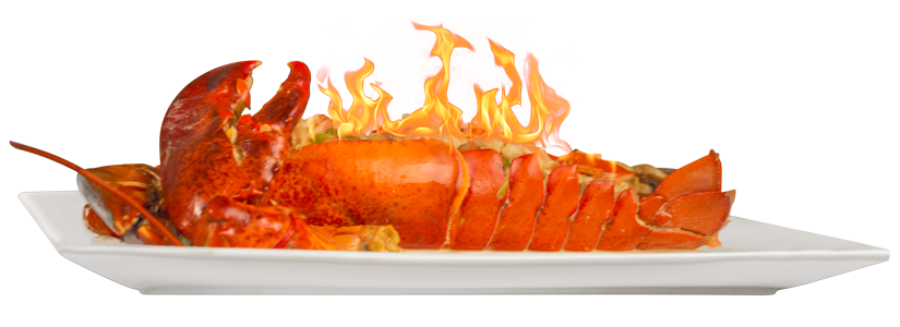 lobster-dona-habana2