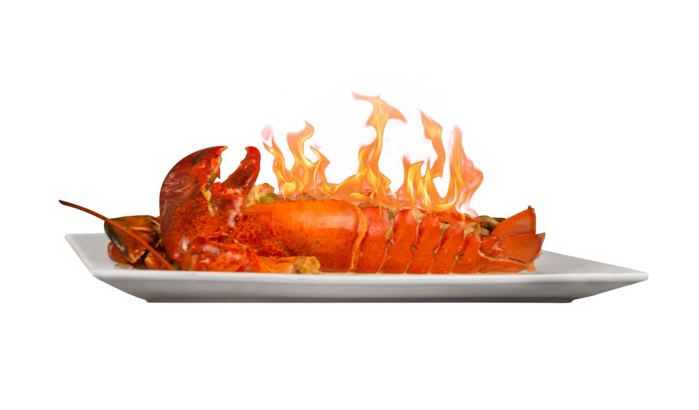 Platos-Principales--Lobster3